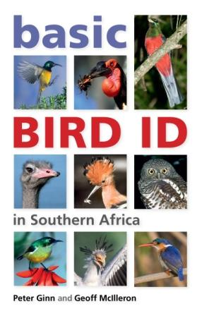 Basic Bird ID