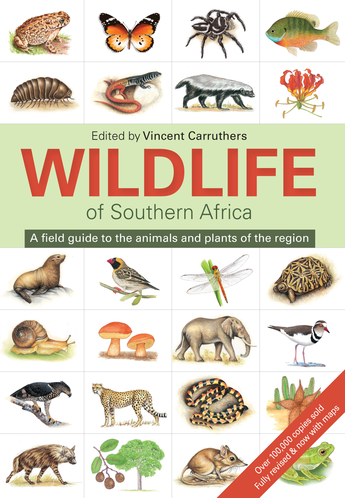 Wildlife of Southern Africa A Field Guide to the Animals and Plants of the Region
