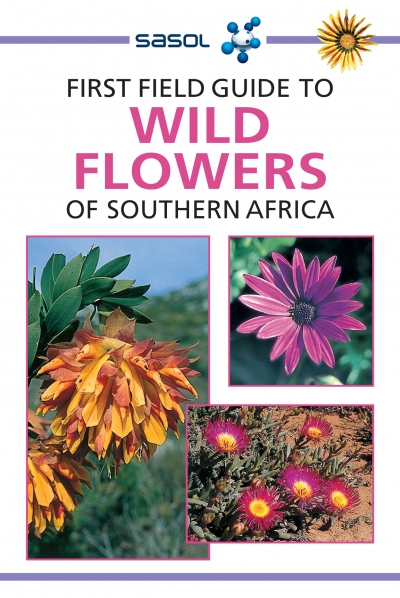 First Field Guide to Wild Flowers of SA