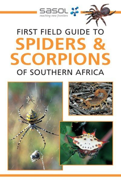 First Field Guide to Spiders & Scorpions