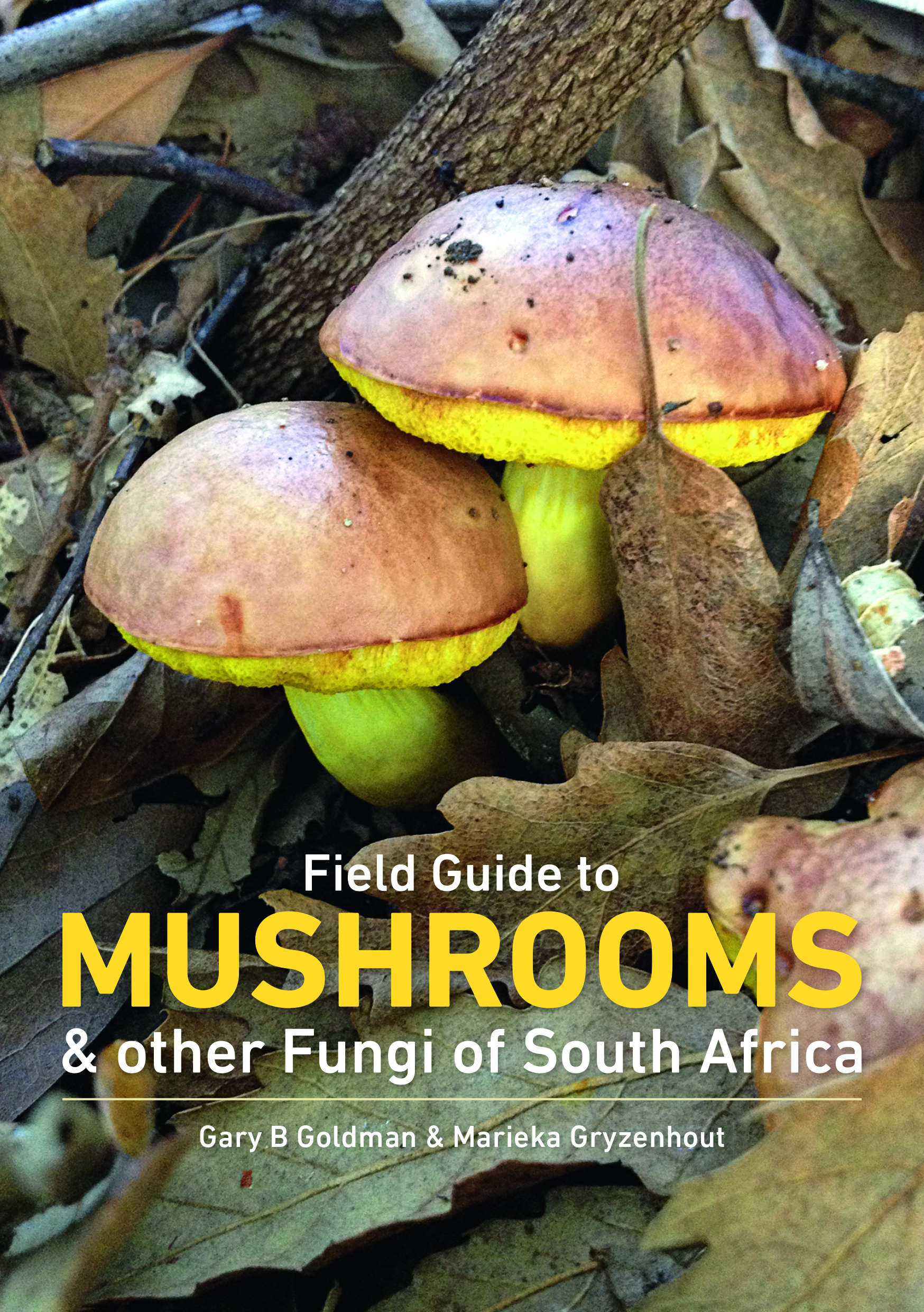 Field Guide to Mushrooms & Other Fungi of SA