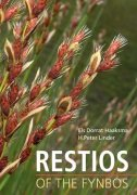 Restios of the Fynbos
