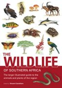 Wildlife Of Southern Africa (Larger Illustrated)