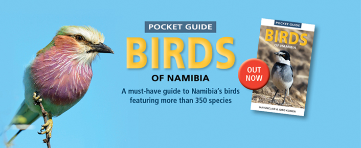 Pocket Guide to Birds of Namibia