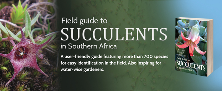 Field Guide to Succulents in Southern Africa